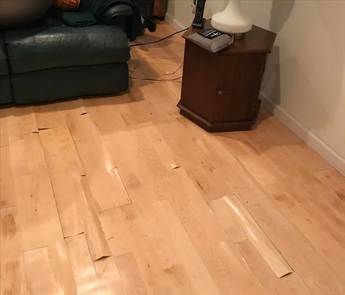 Buckled laminate flooring in a family room