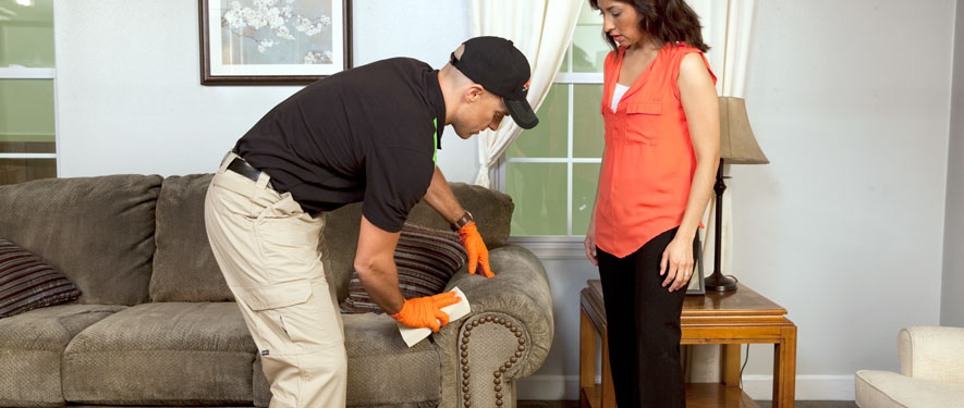 Willow Street, PA carpet upholstery cleaning
